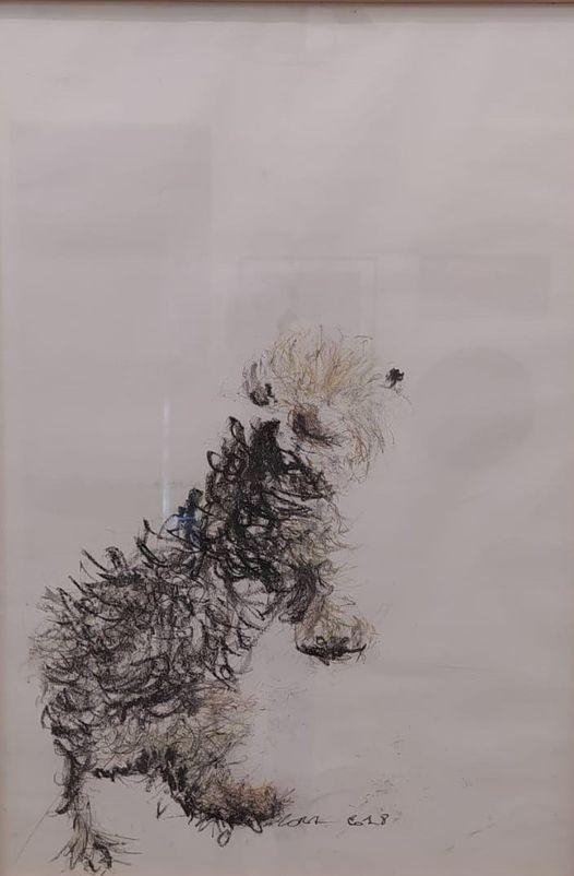 artista bb arte ipanema nora sari